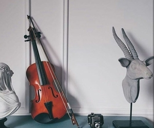 cello, music, and passion image