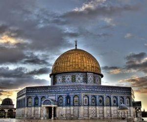 freedom, islam, and palestine image