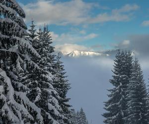 beauty, weekend, and wintertime image