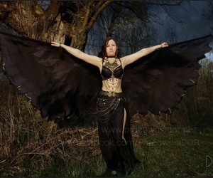 hand painted silk, bird wings, and raven wings image