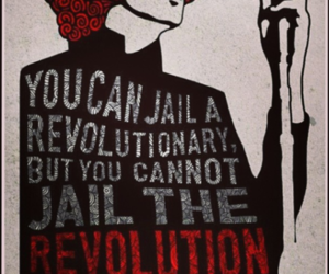 activism, activists, and government image