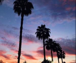 california, la, and palm trees image