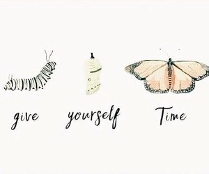 quotes, butterfly, and words image