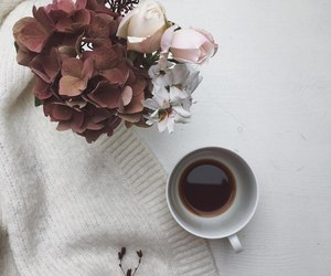 clothes, drink, and tea image