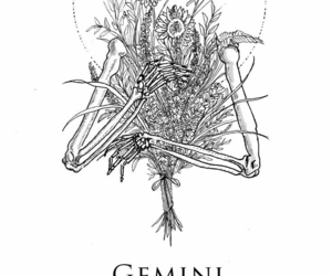gemini, horoscope, and twins image
