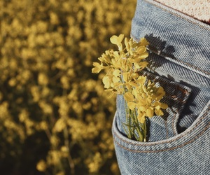 flower, grain, and jeans image