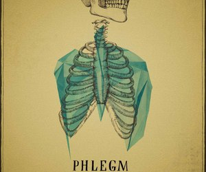 skeleton and phlegm image