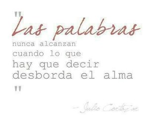 julio cortazar, alma, and frases image
