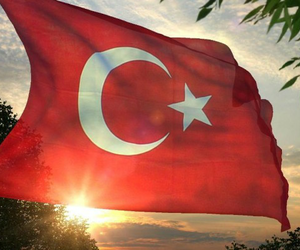 turkey and flag image