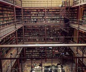 amazing, books, and library image