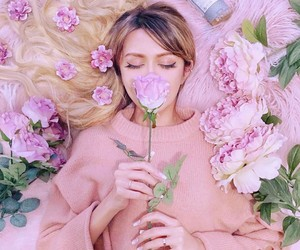 pink, flowers, and photography image