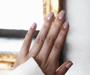 beauty, manicure, and nail polish image