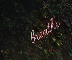 article, breathe, and nature image