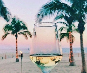 beach, cheer, and champagne image