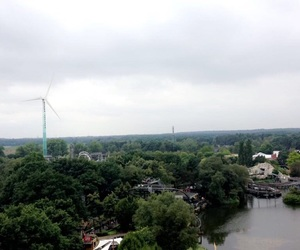 aesthetic, nature, and rollercoster image