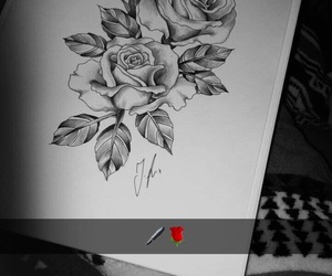 draw, drawing, and roses image