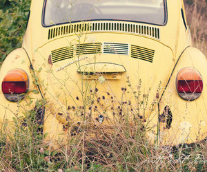 car, flowers, and yellow image