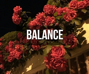 balance, download, and fence image