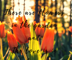 flowers, garden, and love image