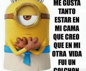 frases, gracioso, and minion image