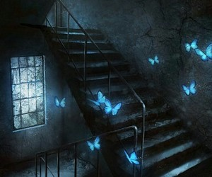 butterfly, blue, and art image