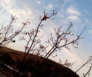 azadi, snow, and kurdistan image