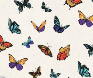 butterfly, background, and mariposas image