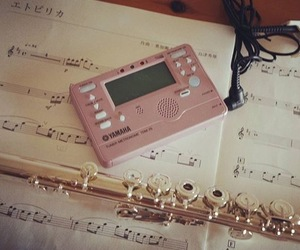 flute, music, and pink image