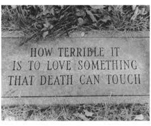 love, death, and quotes image