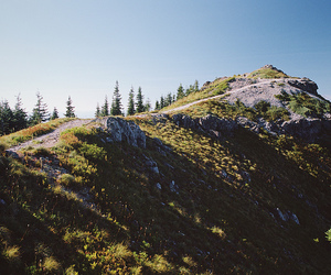 landscape, trail, and pnw image