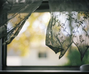 wind, 35mm, and analog image