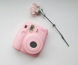 pink, flowers, and camera image