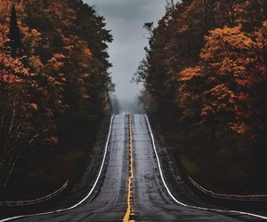 landscape, photography, and road image