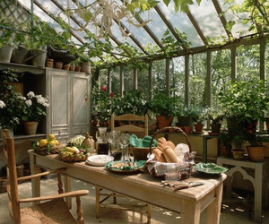 dining room and nature image