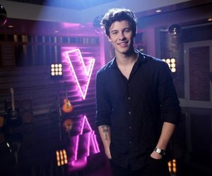 singer and shawn mendes image