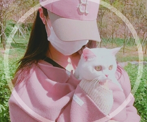 cat, pink, and ulzzang image
