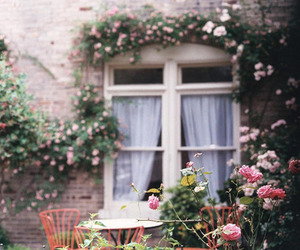 flowers, vintage, and window image