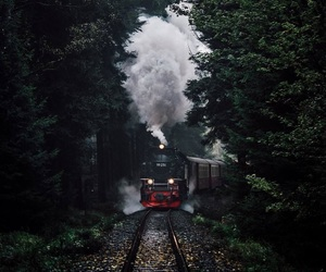 forest, harry potter, and train image