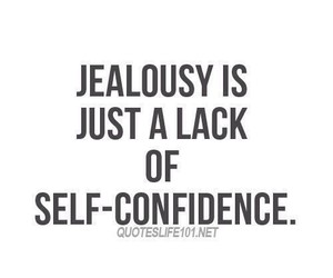 quotes, jealous, and life image