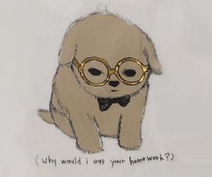 dog, cute, and homework image