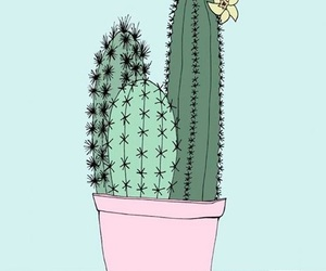 cactus, art, and pink image