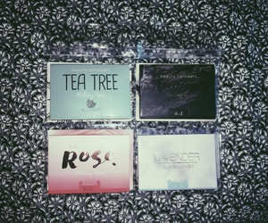 aesthetic, tea tree, and beauty image