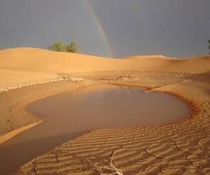 desert, rainbow, and Sahara image