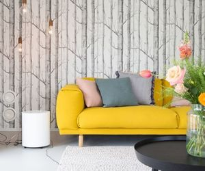 couch, flowers, and interior image