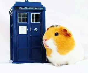 doctor who, sweet, and telephonebox image
