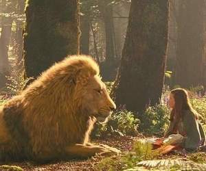 lion, narnia, and Lucy image