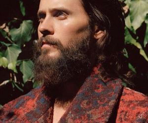 beard, celeb, and man image
