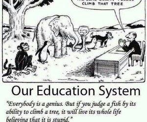 education, quotes, and school image