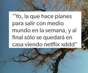 antisocial, frases, and planes image