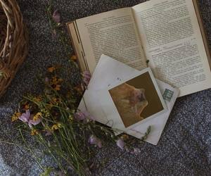 book, flower, and photography image